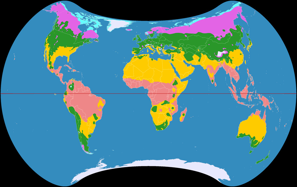 Climatic world map, projected to Strebe 1995 Projection.